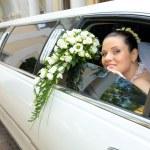 Bride — Stock Photo #11108723