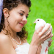 Bride with dove — Stock Photo