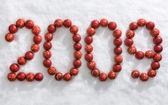 Symbolem nowego roku — Zdjęcie stockowe