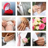 Bröllops collage — Stockfoto