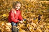 Placer de otoño — Foto de Stock