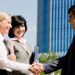 Handshaking partners — Stock Photo #11123841