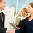 Business handshake — Stock Photo #11124750