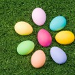 Eggs on the grass — Stock Photo