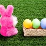 Easter theme — Stock Photo #11126883