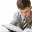 Diligent pupil — Stock Photo #11127343