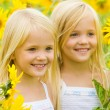 Stock Photo: Sunflower happiness