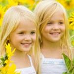 Sunflower happiness — Stock Photo