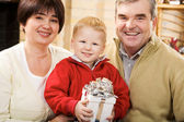 Joyful family — Foto Stock