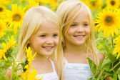 Sunflower happiness — Stock Photo