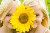 Sunflower children — Stock Photo