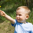 Dandelion present — Stock Photo