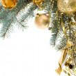 Stock Photo: Decorated branch