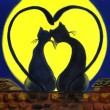 Cats in love — Stockfoto