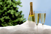 Champagne flutes in snow — Stock Photo