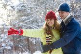 In de winter forest — Stockfoto