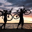Carrying bikes - Foto Stock