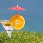 Summer refreshment — Stock Photo