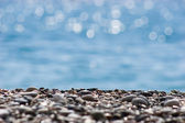Piedras de la orilla — Foto de Stock