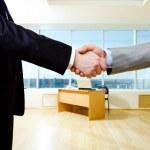 Business handshake — Stock Photo #11242568