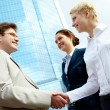 Handshaking partners — Stock Photo #11310506
