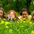 Stock Photo: Girls in grass