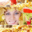 Stock Photo: Collage of autumn