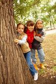 木の後ろに友人 — ストック写真