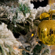 Golden apple on Christmas tree — Stock Photo