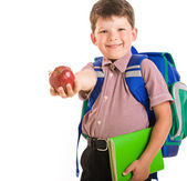 Clever schoolchild — Stock Photo