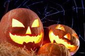 Halloween gourds — Stock Photo