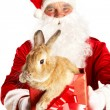 Santa with cute bunny — Stock Photo #11340349