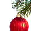 Bauble on a pine — Stock Photo