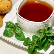 Tewith mint — Stock Photo #11340585