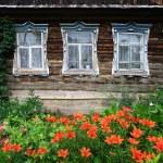 blomsterträdgård — Stockfoto