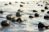 Stones on the seashore — Stockfoto