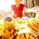 automne bois — Photo