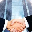 Shaking hands - Stock Photo