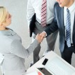 Handshaking partners — Stock Photo #11629862