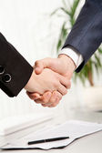 Two business 's shaking hands — Stock Photo