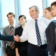Handshaking partners — Stock Photo #11631619