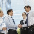 Handshaking partners — Stock Photo #11631887