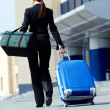 Royalty-Free Stock Photo: Travelling businesswoman