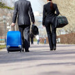 Royalty-Free Stock Photo: Travelling business partners