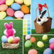 Easter theme — Stock Photo #11633977
