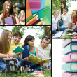 Stock Photo: Collage of education