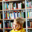 Foto Stock: Library goer