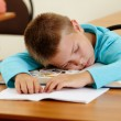 Sleeping at lesson - Stock Photo