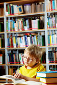 Library goer — Stock Photo