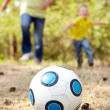 Ball on grassland — Stock Photo